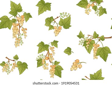 White currant. Ripe berries. Seamless pattern, background. Vector illustration. In botanical style Isolated on white background.