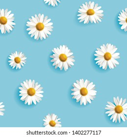 White daisies seamless vector pattern on light blue background. Realistic. Large flowers seamless pattern. Vector illustration.