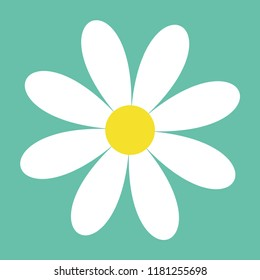 White daisy chamomile. Cute flower plant collection. Camomile icon. Love card. Growing concept. Flat design. Isolated. Green background. Vector illustration