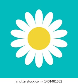 White daisy chamomile. Cute flower plant collection. Love card. Camomile icon Growing concept. Flat design.