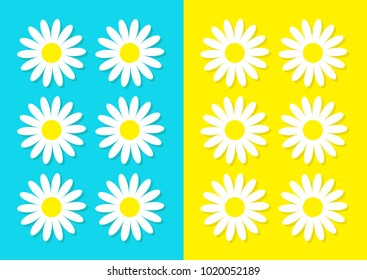 White daisy chamomile icon set. Cute flower plant collection. Love card. Camomile Growing concept. Flat design. Bright blue yellow background. Isolated. Vector illustration