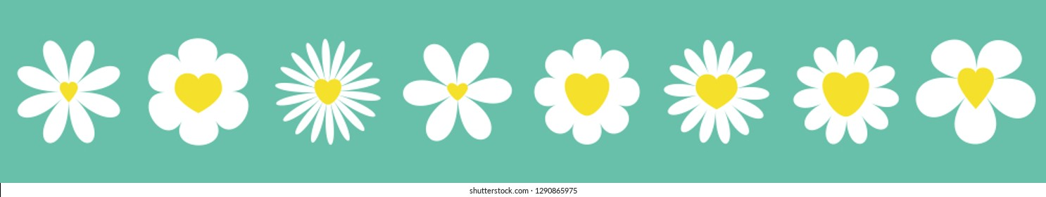 White daisy chamomile set line. Camomile icon. Cute round flower plant collection. Yellow heart center.