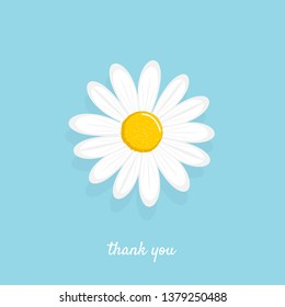 White daisy vector illustration. Cute flower plant isolated on a blue background.