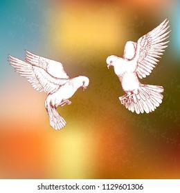 Tauben Hochzeit Stock Illustrations Images Vectors Shutterstock