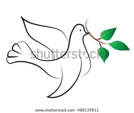 White Dove Olive Branch Her Beak Vector de stock (libre de regalías ...