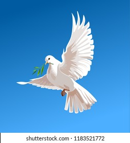 white doves on a blue background, Vector illustration, Business Design Templates. White pigeon isolated. beautiful shiny white dove with olive twig flying way up in a blue sky