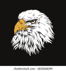 white eagle head design illustration