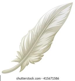 White feather on white background illustration