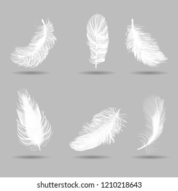 white feathers set, realistic, vector illustration on grey background