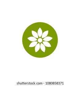 white flat icon of sunflower in green circle. Bloom with long diamond petals and round core. Isolated on white. Vector flower illustration. Eco style. Nature.