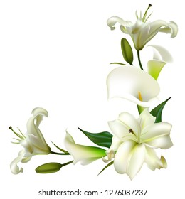 White flowers. Flower background. Calla. Lilies. Green leaves. Border.