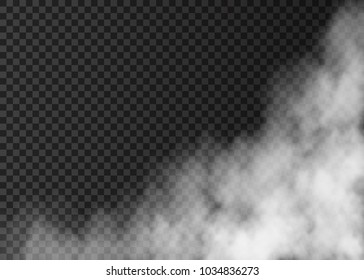 White fog isolated on transparent background.  Steam.  Realistic  vector fire smoke  or mist texture .