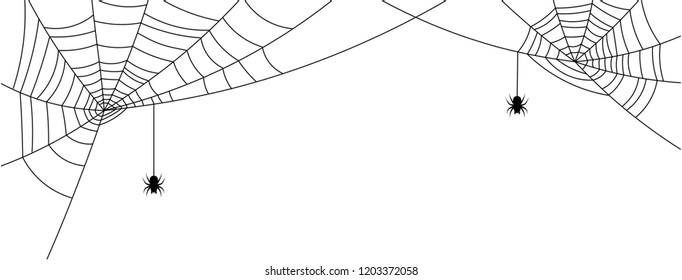 White Halloween banner with spiderweb and spiders. Vector background.