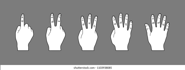 White Hand Gesture Cartoon Style Illustration, Hand Sign Counting Number One to Five, Line Art or Line Drawing