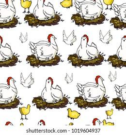 White hen seamless background