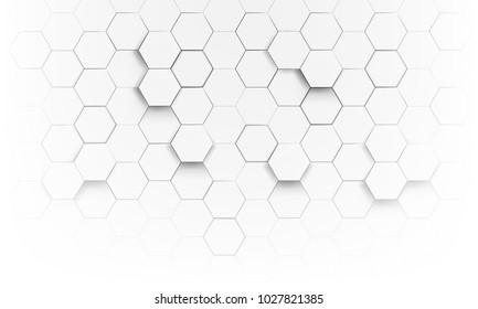 white Hexagon geometric abstract background vector design.