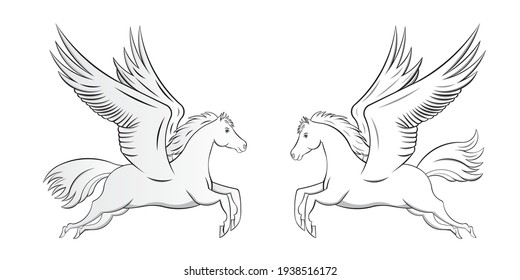 White Horse with flying wings or Pegasus drawing in vector