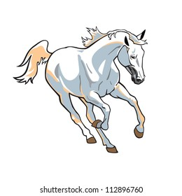 white horse, vector picture isolated on white background,front view image,running stallion