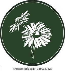 White logo bellis perennis flower on a dark green background. Celtic astrological calendar of the druids. Symbol of a flower in a circle. For natural themes. Chalk drawing on blackboard