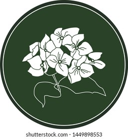 White logo hydrangea flower on a dark green background. Celtic astrological calendar of the druids. Symbol of a flower in a circle. For natural themes. Chalk drawing on blackboard