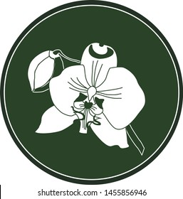 White logo orchid flower on a dark green background. Celtic astrological calendar of the druids. Symbol of a flower in a circle. For natural themes. Chalk drawing on blackboard