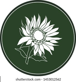 White logo sunflower flower on a dark green background. Celtic astrological calendar of the druids. Symbol of a flower in a circle. For natural themes. Chalk drawing on blackboard