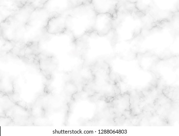 White marble texture pattern with high resolution. - illustration, vector