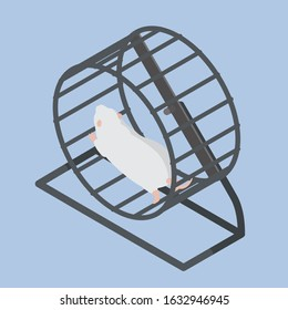 White mouse running in a wheel isometric illustration. Stock vector icon on blue background.
