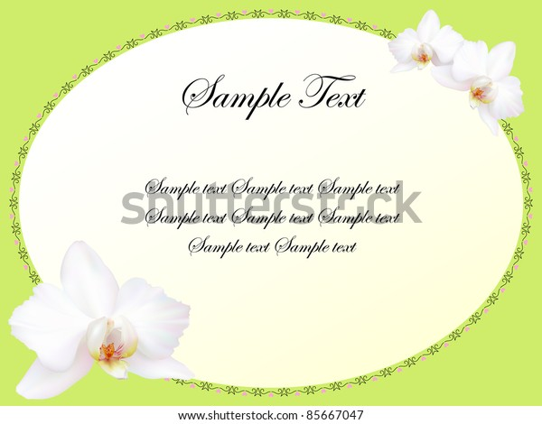 white orchid flowers card