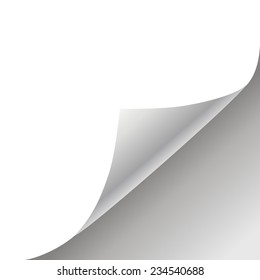 white paper background vector with page curl
