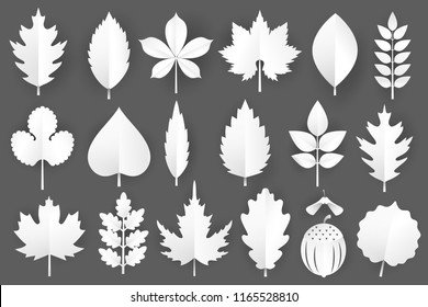 White paper cut autumn leaves set. 3d fall elements isolated on gray background.Vector illustration