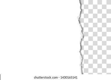 White paper sheet torn from the up to the down with transparent background. Vector paper mock up.
