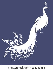 White peacock. Isolated bird on blue background. Vector illustration