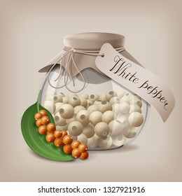 White Peppercorns in a glass jar with a branch of fruit pepper. Vector illustration