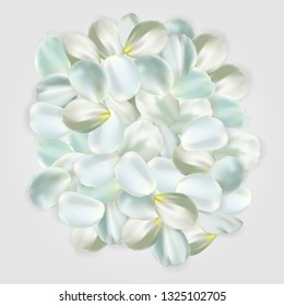 White petals isolated on pale background. For greeting card, wallpaper, flyers, posters or wedding invitation background party design. Vector illustration.