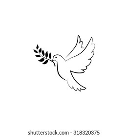 White pigeon flying peace symbol