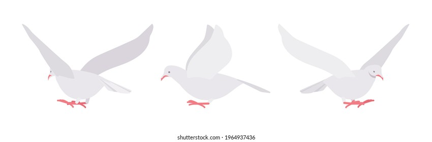 White pigeons, doves set, domestic or street bird in flight. Wildlife study, ornithology and birdwatching concept. Vector flat style cartoon illustration isolated on white background, different views