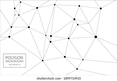 white polygon background, Abstract background for Website design,Vector EPS.10