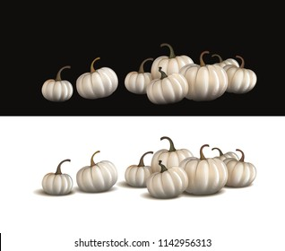 White pumpkin isolated on white and on black. Realistic vector pumpkins.