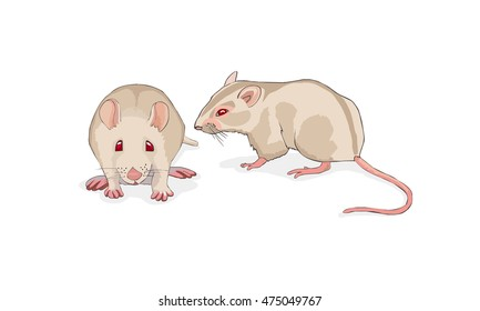 White rat isolated on white background. Icons with laboratory mice. Vector.