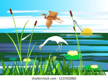 White and red  heron flying above the lake, gragonflies, wetland landscape, vector wildlife