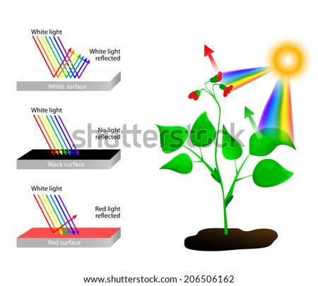 white reflects all colors light object stock vector royalty free