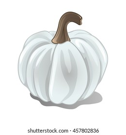 White ripe pumpkin isolated on a white background.  Sketch for a poster or card for the holiday of all evil spirits Halloween or thanksgiving day. Vector cartoon close-up illustration.