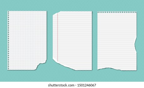 White ripped, lined and squared notebook, copybook paper sheets are on turquoise background. Vector illustration