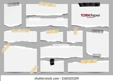 White ripped paper strips collection. Realistic paper scraps with torn edges and adhesive tape. Sticky notes, shreds of notebook pages. Vector illustration.
