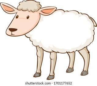 White sheep standing on white background illustration