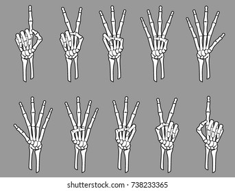 White Skeleton Number Hands