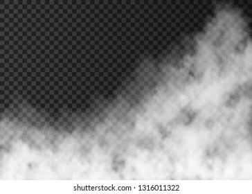 White smoke  isolated on transparent background.  Steam special effect.  Realistic  vector fire fog  or mist texture.