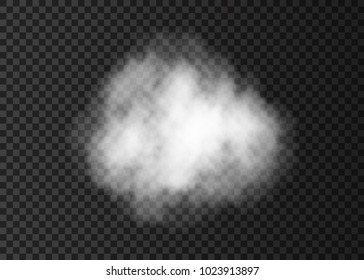 White  smoke puff.  Steam explosion special effect.  Realistic  vector   fire fog or mist texture .