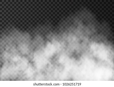 White smoke texture isolated on transparent background.  Steam special effect.  Realistic  vector   fog  or mist.